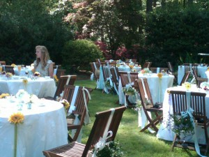 Themes for Tea Party
