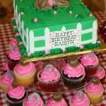 Birthday Party Horse Rides