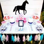 Boy Horse Birthday Party