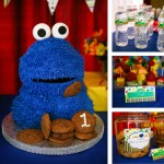 Elmo and Zoe Birthday Party