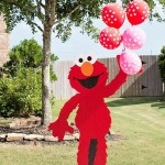Elmo Second Birthday Party Ideas