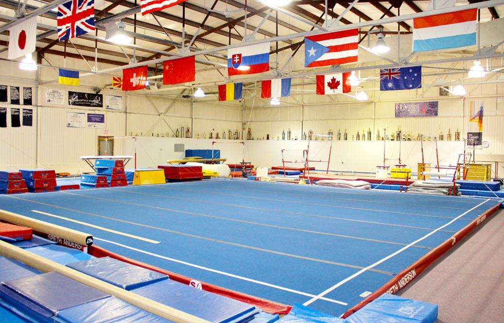 Gemini Gymnastics Birthday Parties