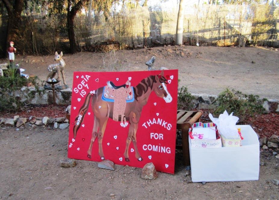 Girl Horse Themed Birthday Party