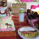 Horse Farm Birthday Parties