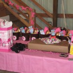 Horse Stables for Birthday Parties