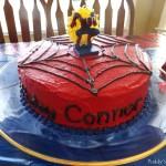 Spiderman 4th Birthday Party
