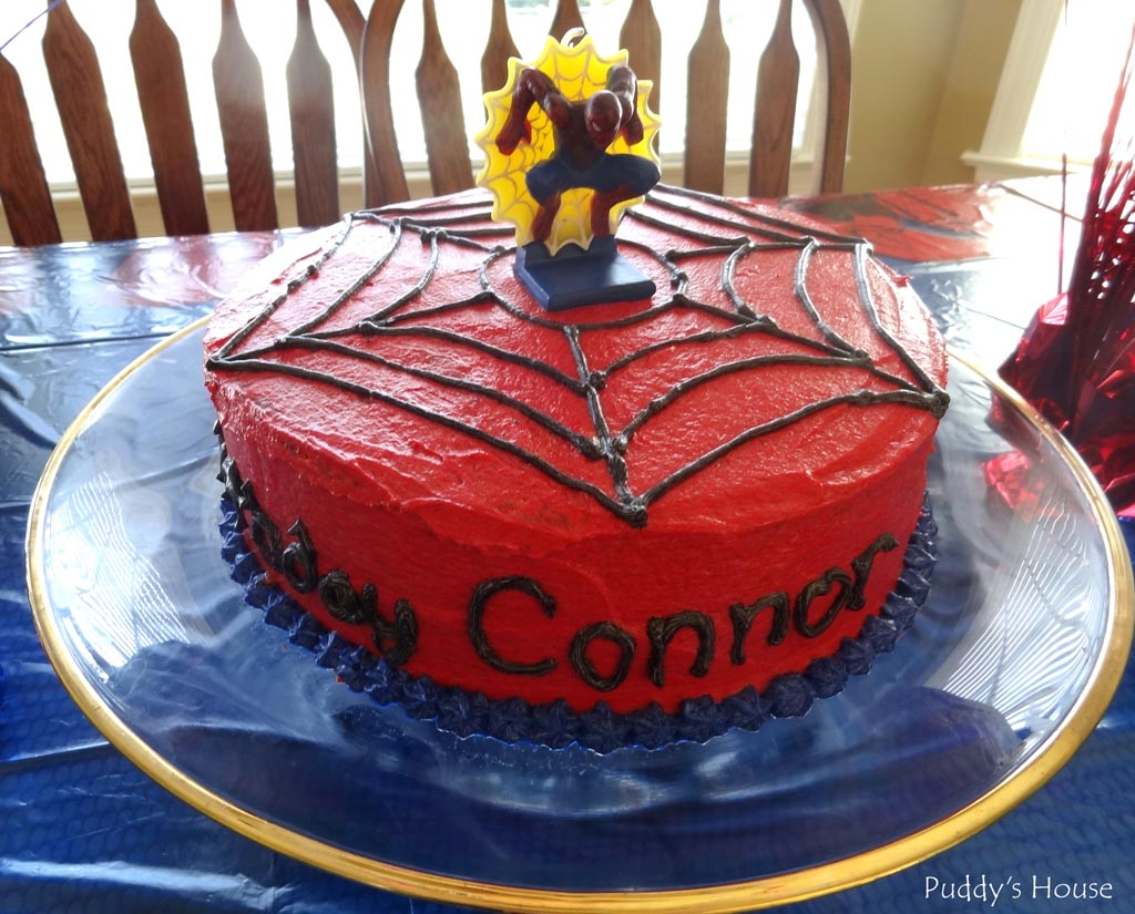 Spiderman 4th Birthday Party