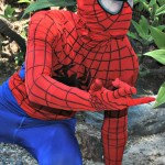 Spiderman Character Birthday Party