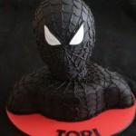 Spiderman Venom Birthday Party