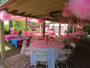 Ballerina 1st Birthday Party Decorations