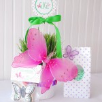 Butterfly Birthday Party Favors