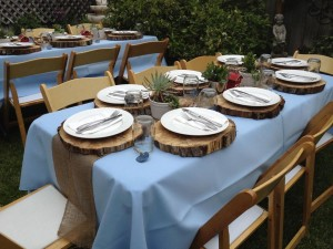 Country Themed Graduation Party