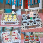 Farm Birthday Party Decorations