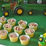Farm Birthday Party Food Ideas