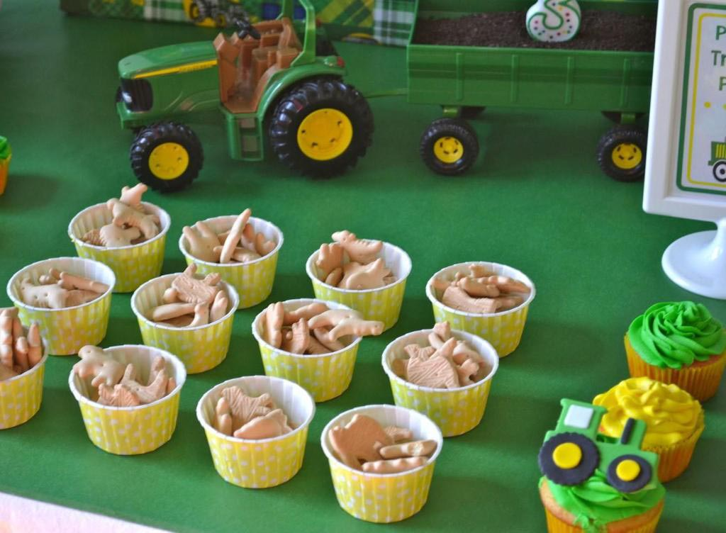 Farm Birthday Party Food Ideas
