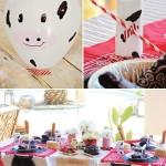 Farm for Birthday Party