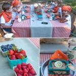 Farm Themed Birthday Parties