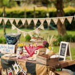 Farm Themed Birthday Party Ideas