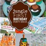 Safari First Birthday Party