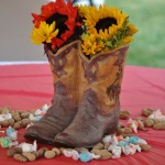 Western Cowboy Birthday Party Decorations